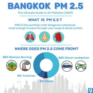 Bangkok and the Battle Against Air Pollution • Air Pollution Bangkok inforgraphic what is pm25