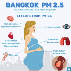 Bangkok and the Battle Against Air Pollution • Air Pollution Bangkok inforgraphic effects